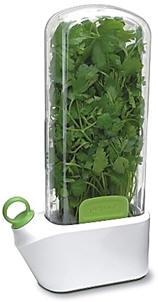 salad.22