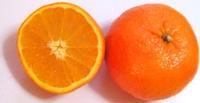 orange 571