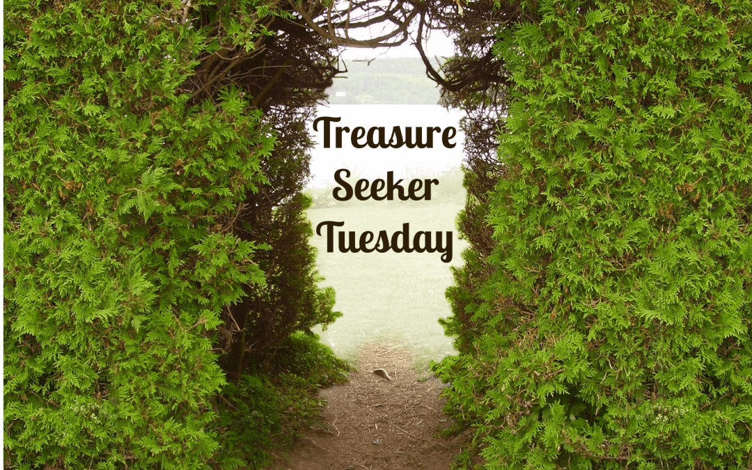 Treasure Seeker Tuesday #26 Spotlight on Book Reviews