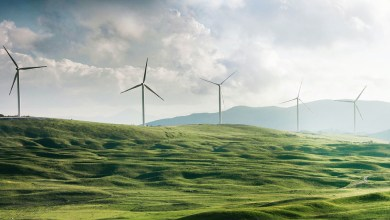 Essity commits to net-zero greenhouse gas emissions by 2050