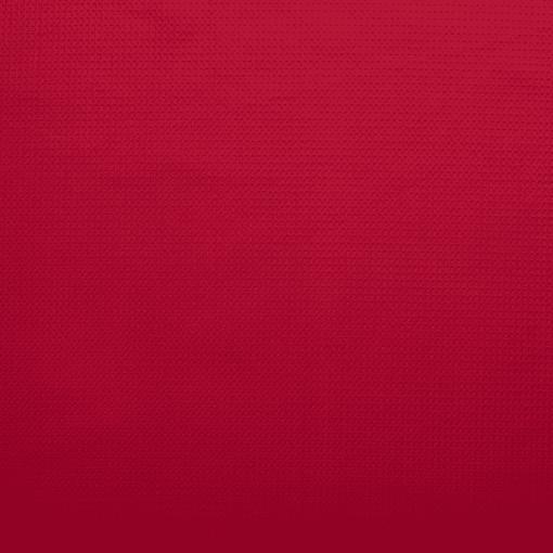 Tissu éponge nid d'abeilles rouge