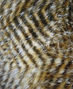 fourrure imprimé autruche