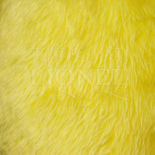 fourrure poil court jaune poussin