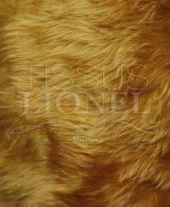Short-haired fur lion