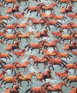 Tissu jersey de coton equestre