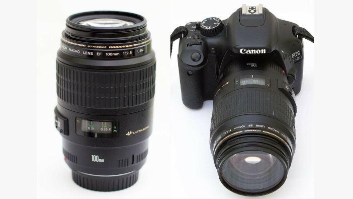 Canon 100mm macro teszt