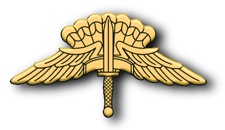 ArmA 3 Clan MilSim - Commander gold