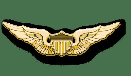 ArmA 3 Clan MilSim - Pilot gold 3