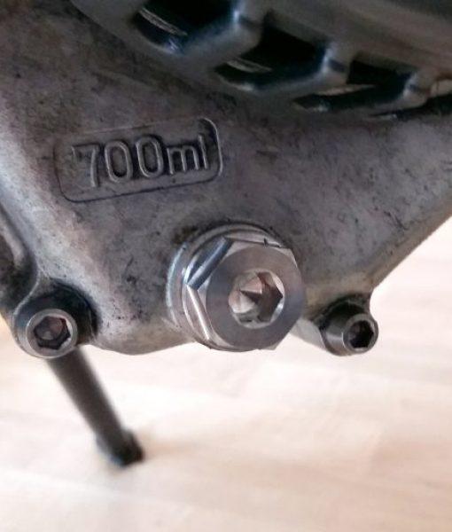 TItanium oil plug