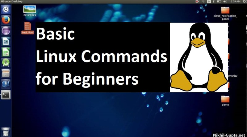 basic linux commands