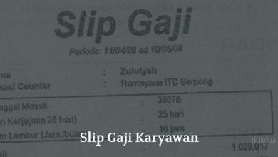 Photo of Contoh Slip Gaji Karyawan Swasta dan PNS