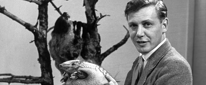 10858456-high_res-attenborough-at-90-(2)-BBC