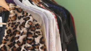 fur clothing coat