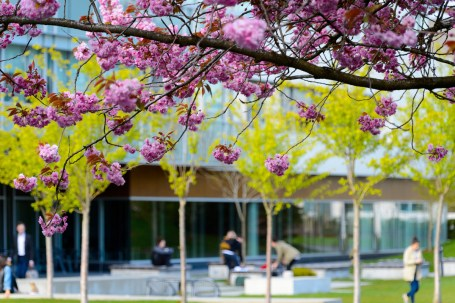 University Of British Columbia, Vancouver
