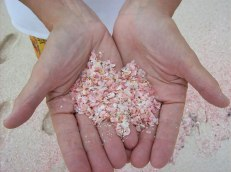 Pink Sand Beach, Bahamas. The idyllic pink sand of the Bahamas is pigmented by washed-up coral remnants, which are dashed and ground to tiny pieces by the surf.Image credits: greenglobe.travel