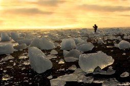 Jokulsarlon, Iceland. The black volcanic sand on this Icelandic beach contrasts beautifully with the white and glassy chunks of ice. Image credits: Manisha Desai
