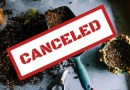 CANCELED – Getting the Garden Ready with URI Master Gardeners