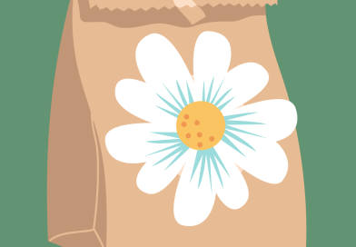 a brown paper bag with a flower printed on the outside