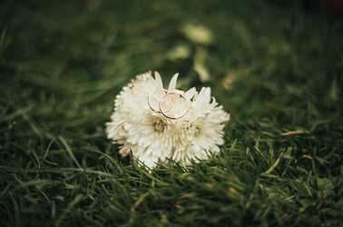 ti voglio sposare magazine - fedi-fiore-bianco