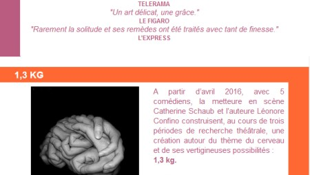 Newsletter-Les-Productions-du-sillon-decembre-2015-Theatre