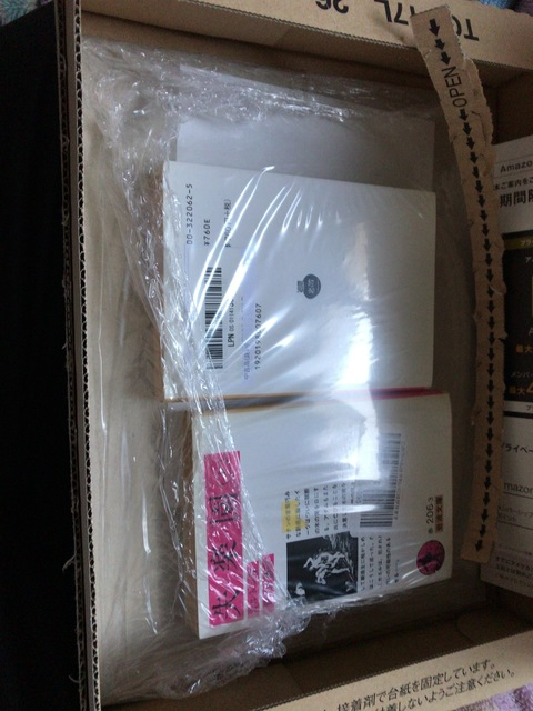 IMG 2770 thumbnail2 - 欲しいものは、まだ買わないでおく。