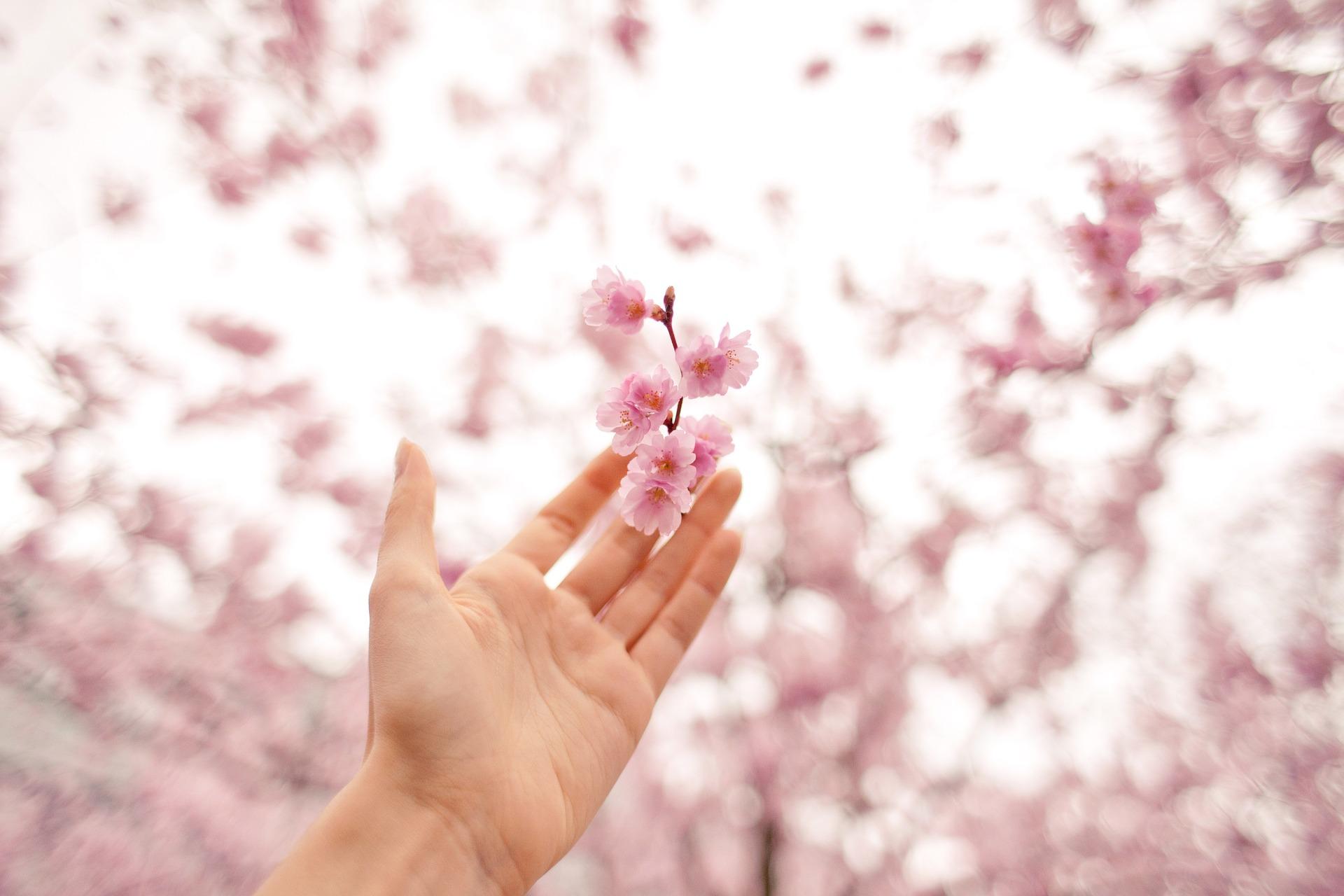 Se compi gesti di bellezza aumenta il tuo benessere
