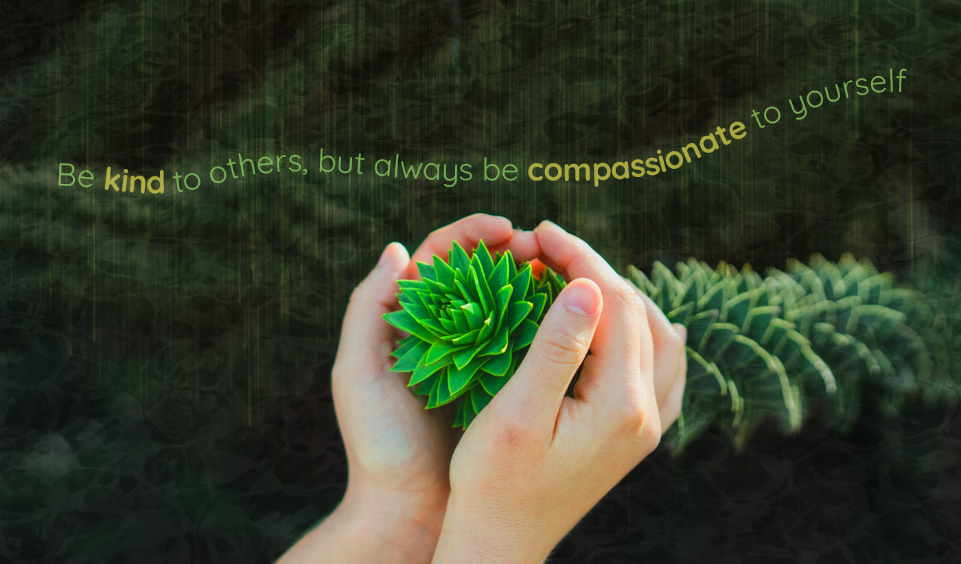 daily inspirational quote image: hands holding a twisting succulents over a green background