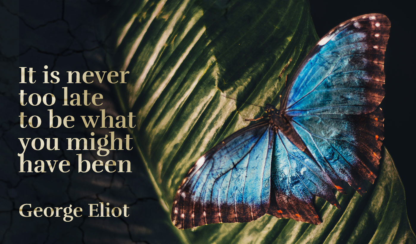 daily inspirational quote image: a dark image of a blue butterfly on a dark green leaf