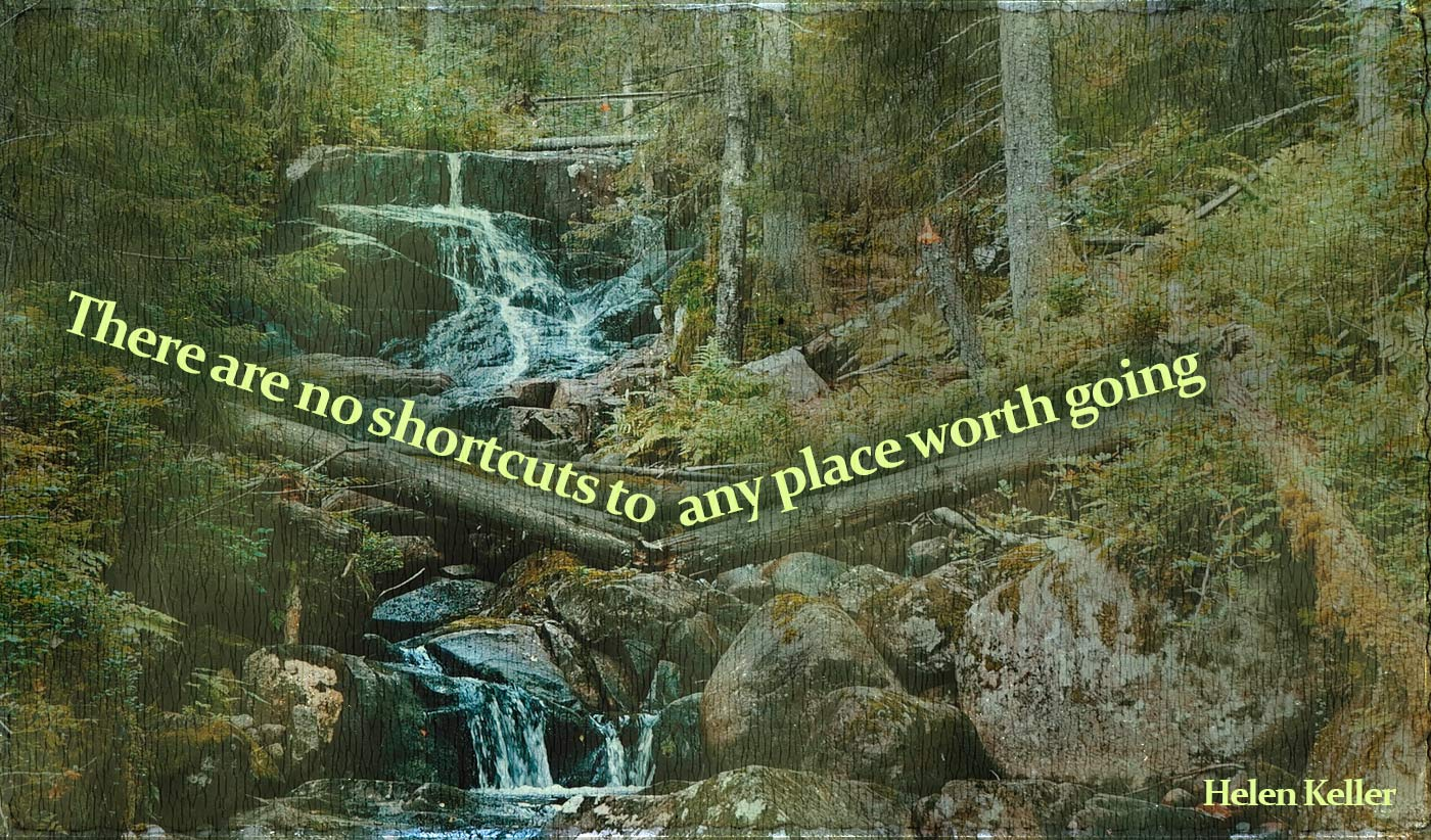 daily inspirational quote image: a forest with a river trickling down and creating small waterfalls