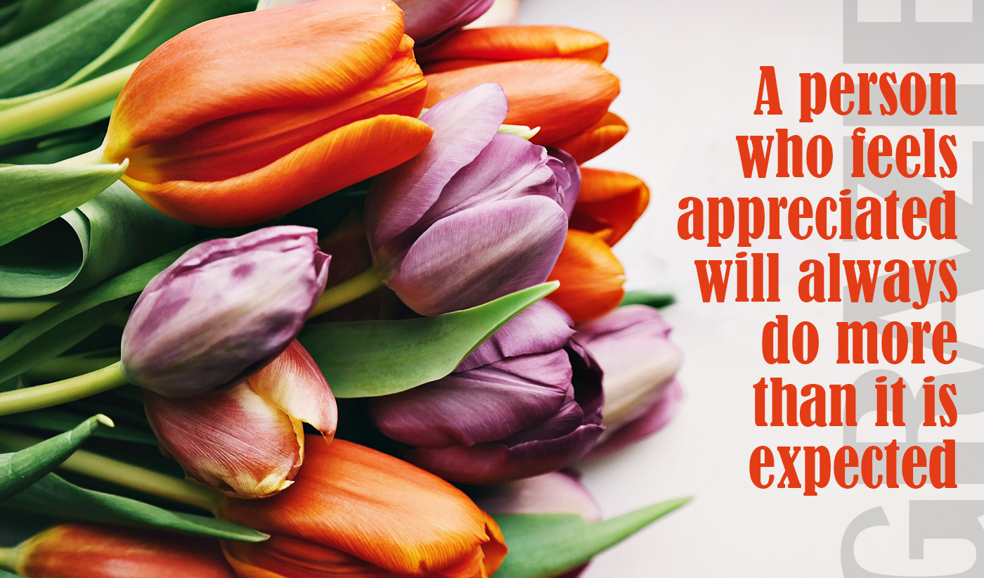 daily inspirational quote image: a bunch of colorful tulips on a white surface