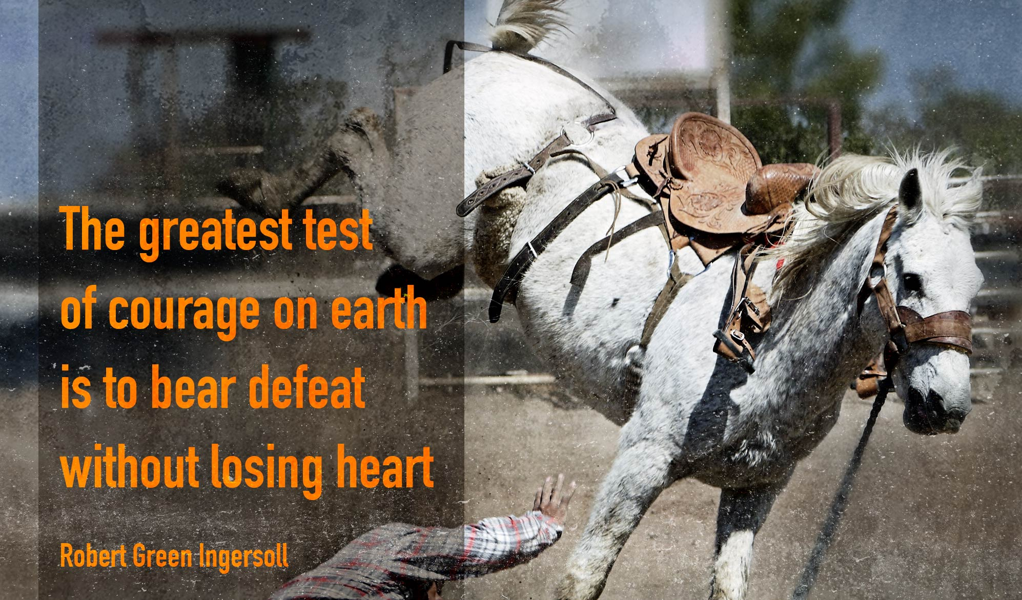daily inspirational quoe image: a man being thrown off his horse