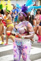 tj876 Jamaica Carnival Road March 2013-29