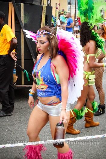 tj876 Jamaica Carnival Road March 2013-40