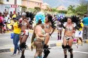 tj876 Jamaica Carnival Road March 2013-54