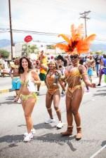 tj876 Jamaica Carnival Road March 2013-8