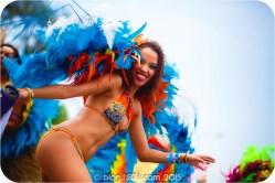 tj876 Jamaica Carnival 2015 (104)