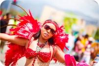 tj876 Jamaica Carnival 2015 (166)