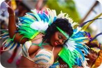 tj876 Jamaica Carnival 2015 (213)