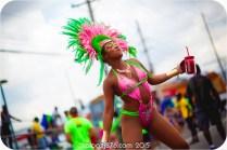 tj876 Jamaica Carnival 2015 (48)