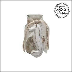 flesje met schelpen en zeepaardje klein