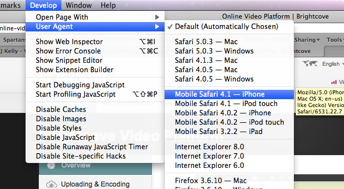 A screenshot showing how to enable Safari User Agent spoofing.