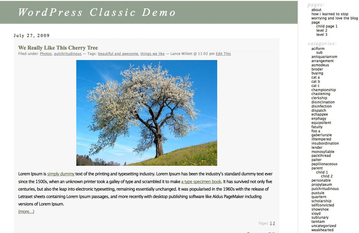 WordPress Classic theme.