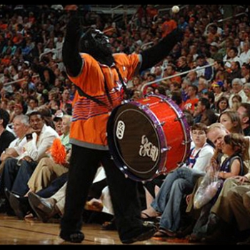 Phoenix suns mascot with tjs custom drums