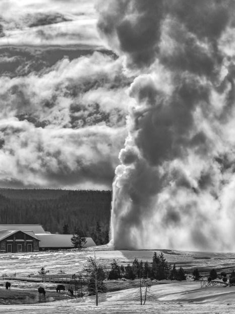 Old Faithful Eruption