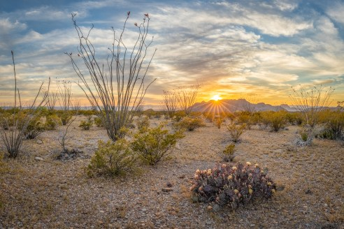 Chihuahuan Desert Sunset