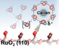 pH- and Cation-Dependent Water Oxidation on Rutile RuO2(110)
