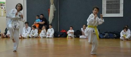 Osnovne tehnike Taekwon-Do-ja in 1. forma Chon-Ji