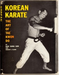 korean-karate-tae-kwon-d071