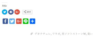 Graphy-AddToAny Share Buttonsシェアボタン設置画像(記事下)