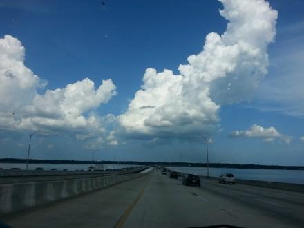 A daily drive across the Buckman bridge is beautiful